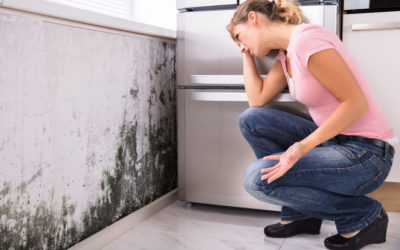How To Sell Your Home With Mold